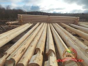 Ровные ряды бревен экологически чистого Костромского леса