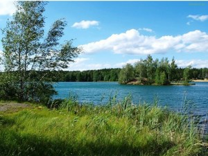 Прекрасный пейзаж одного из поселков по Егорьевскому шоссе сможет дополнить деревянный домик от нашей строительной компании