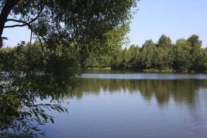 Прекрасный вид, неправда ли? Построив на берегу этой реки собственный деревянный домик вы сможете наслаждаться природой каждые выходные