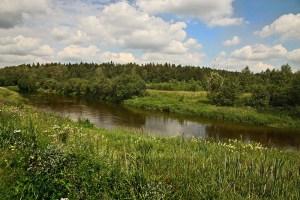 Ильинское шоссе проходит вдоль поселков с уникальной живой природой, именно здесь приятно будет отдыхать летом, вдали от городской суеты, в деревянном домике от компании