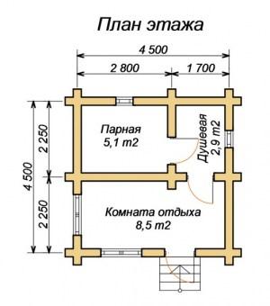 Планировка дачной бани 4.5 х 4.5 м.