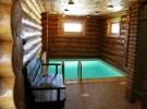 Устройство бассейна в бревенчатом доме