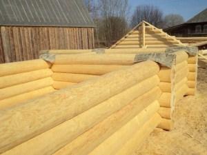 Древесина, заготовленная в зимний период времени, содержит в себе меньше влаги, а это значит, что усадка дома пройдет почти незаметно