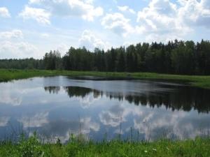 На берегу одной из множества рек можно построить собственный брусовой или бревенчатый дом от нашей строительной компании