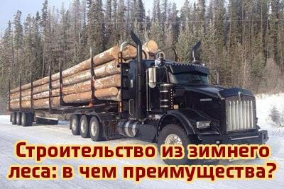 Строительство из зимнего леса — в чем преимущества?